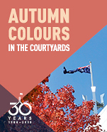 AUTUMN COLOURS IN THE COURTYARD TOUR
