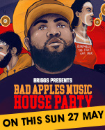 Briggs: Bad Apples House Party